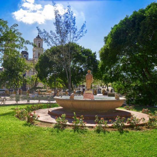 Valladolid Fuente
