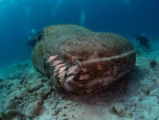Isla Mujeres Musa Escultura Coche bajo el agua