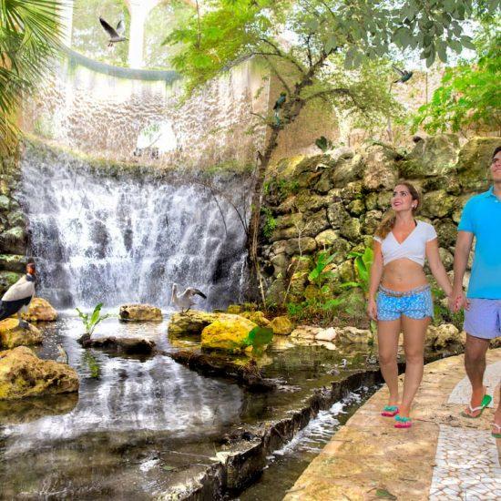 Parque Xcaret Aviario