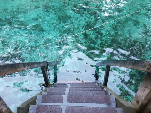 Cenote Zacil-Ha Riviera Maya